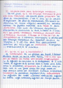 epi page 2.2